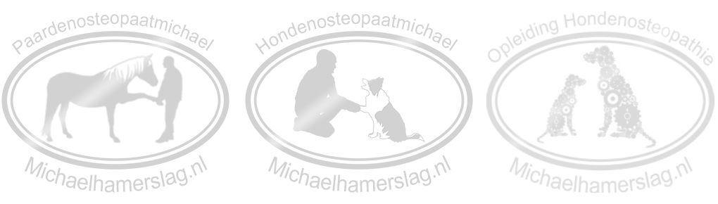 Michael Hamerslag